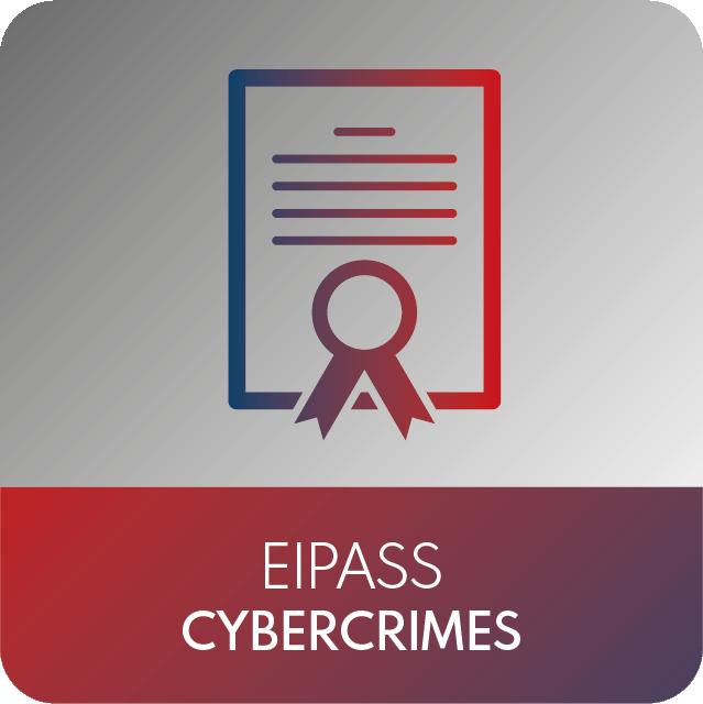 icone EIPASS-06
