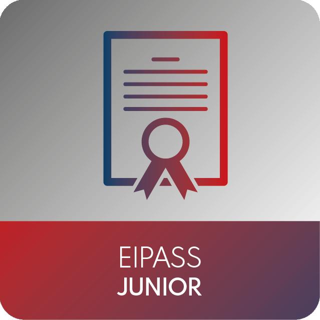 icone EIPASS-10
