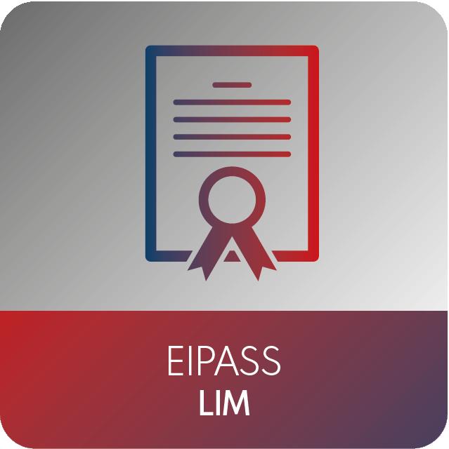 icone EIPASS-11