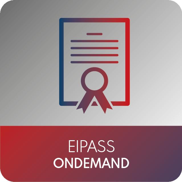 icone EIPASS-12