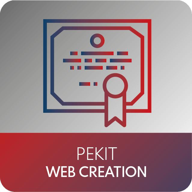 icone PEKIT-11
