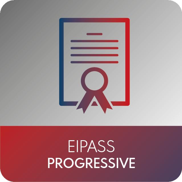 icone EIPASS-14